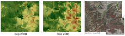 NDVI of beetle-killed forests